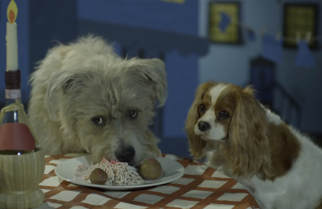 The Only Live Action Remake Of Lady And The Tramp We Ll Ever Need Indiewire