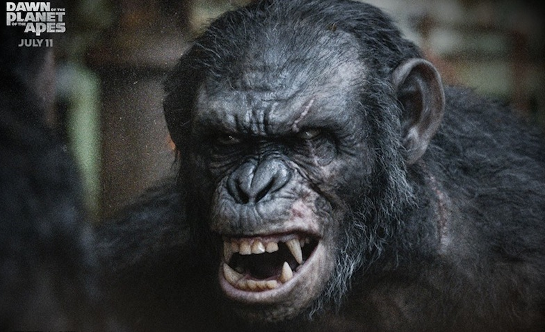 Watch: Koba Is Dangerously Playful In Clip From 'Dawn Of ...