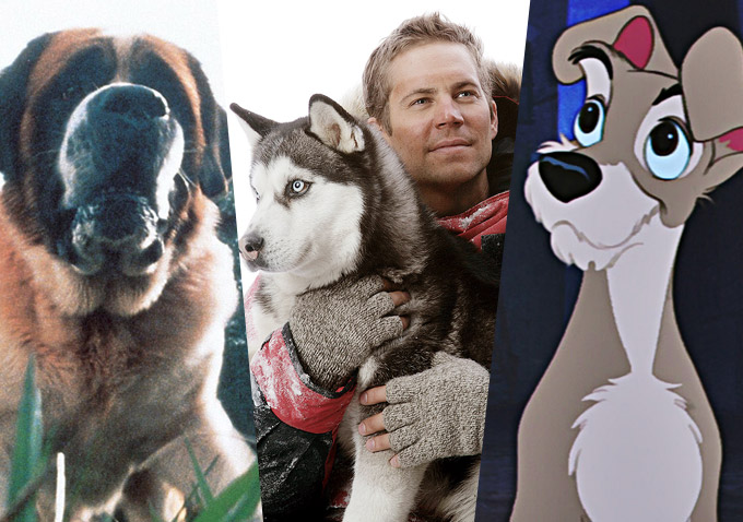 15 Great Films About Dogs Indiewire