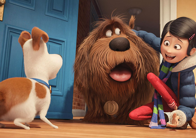 secret life of pets movie review talking dogs are funny