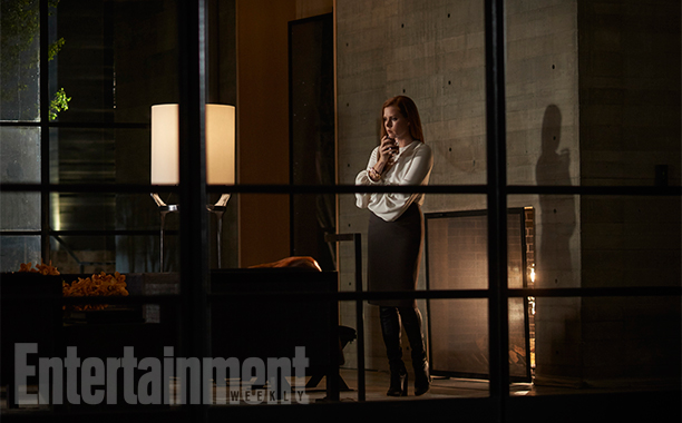 Amy Adams Nocturnal Animals