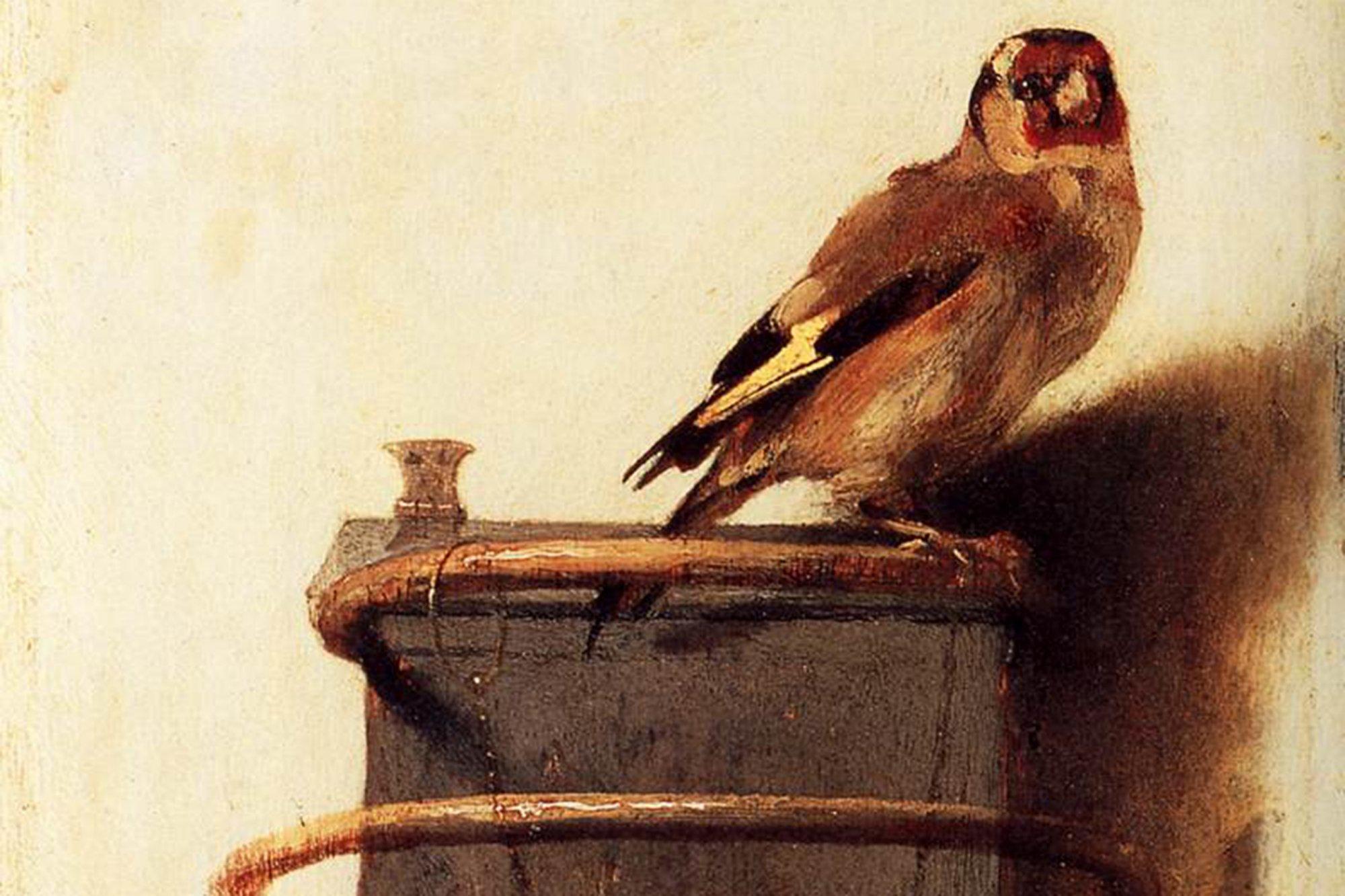 The Goldfinch Novel Pdf