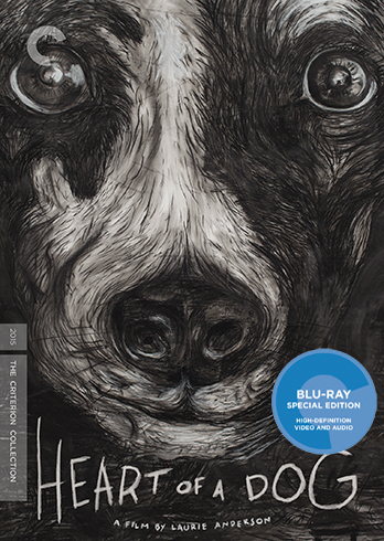 heart-of-a-dog-criterion