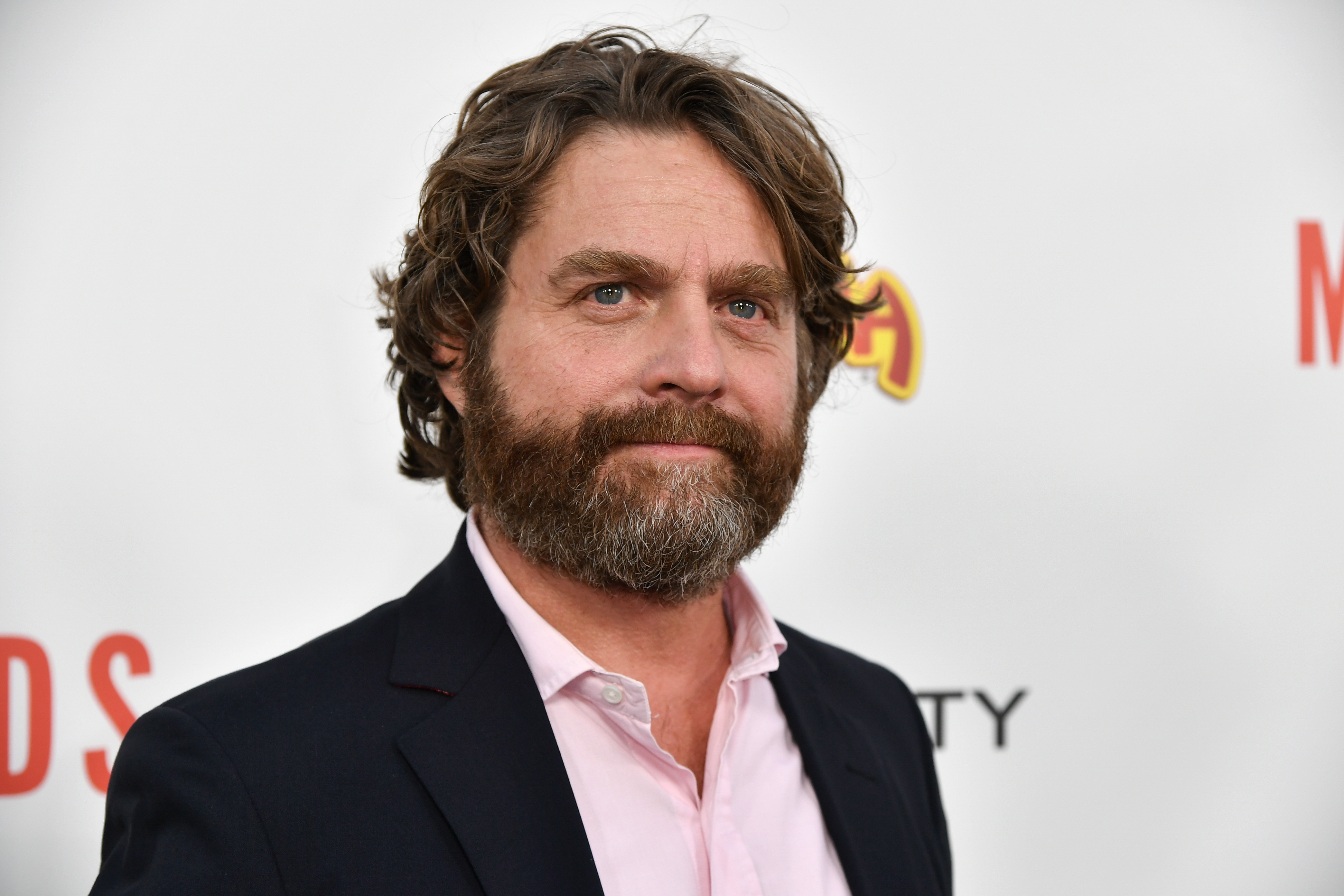 Zach Galifianakis Created a Gerrymandering Documentary Named 'Democracy for Sale' – Watch Clip