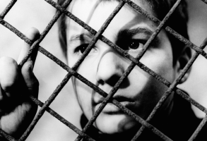"""""""The 400 Blows"""" Criterion Collection"""
