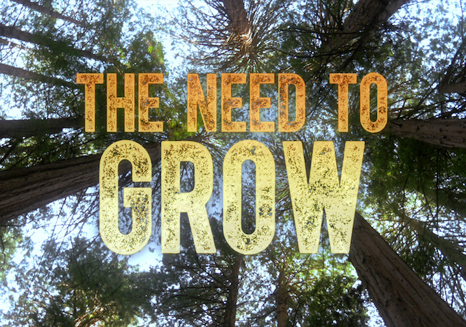 Project of the Day: The Need to Grow