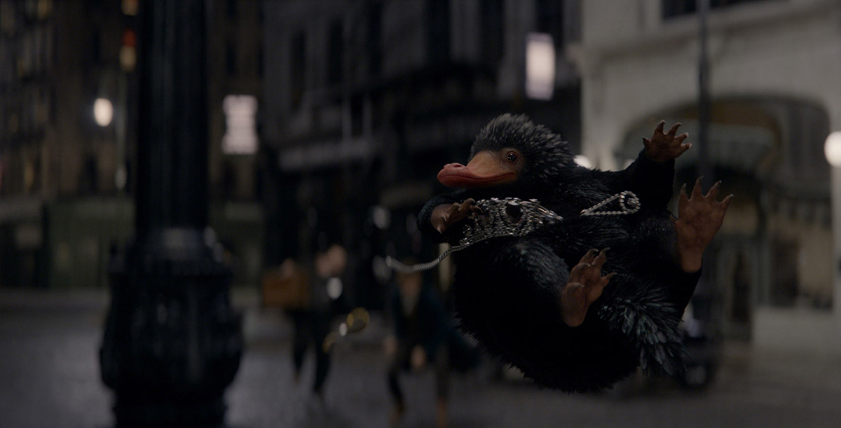 Fantastic Beasts and Where to Find Them': A VFX Creature Guide ...