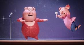 Sing pigs