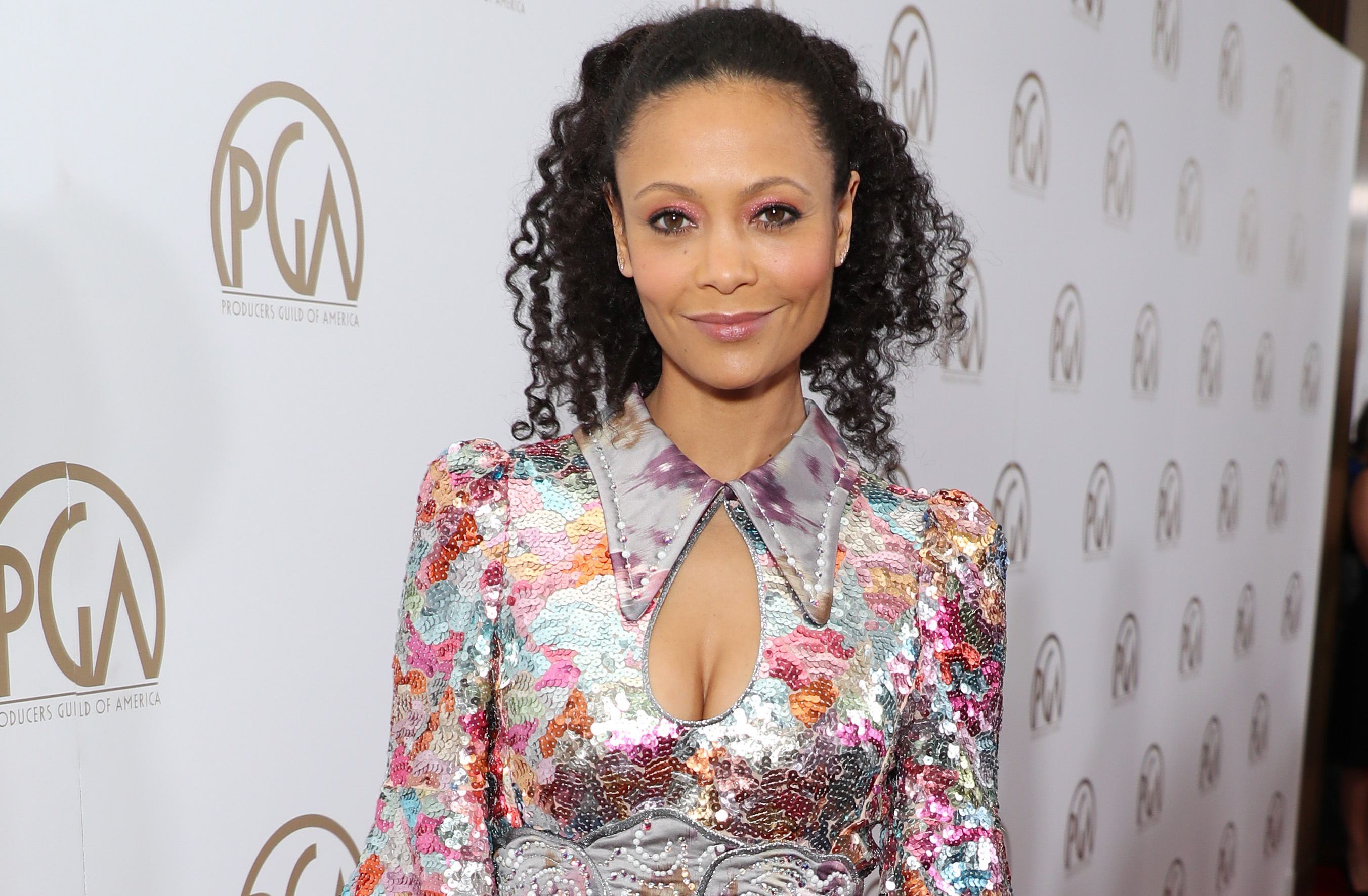 Westworld's Thandie Newton also getting equal pay: 'It's really exciting'