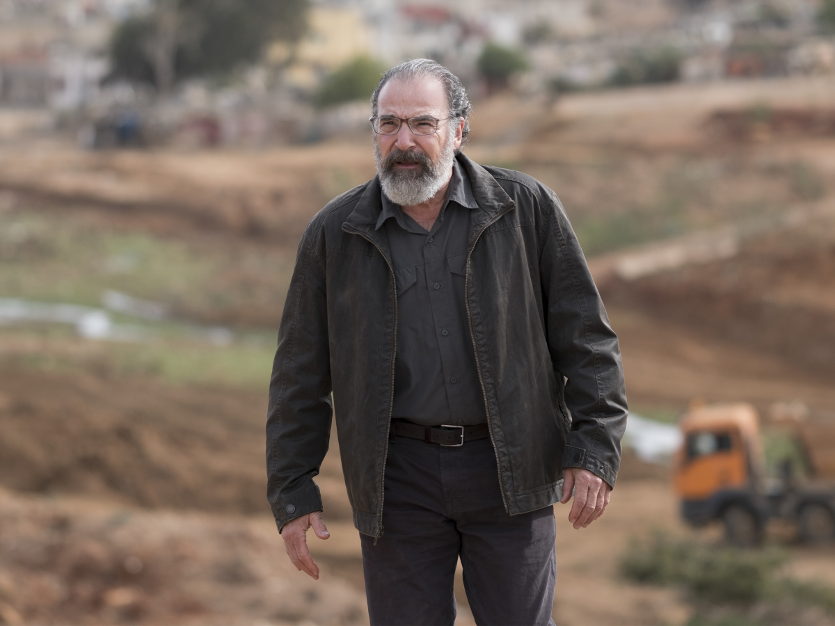 Homeland Season 6 Episode 4 Mandy Patinkin