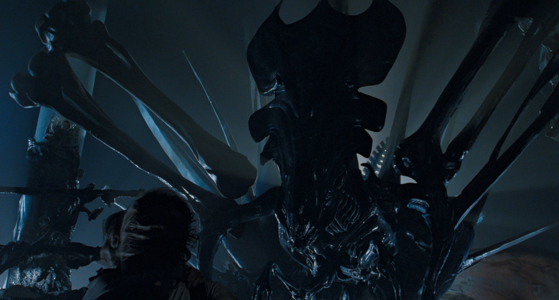 Alien': Every Stage in the Xenomorph's Gruesome Life Cycle