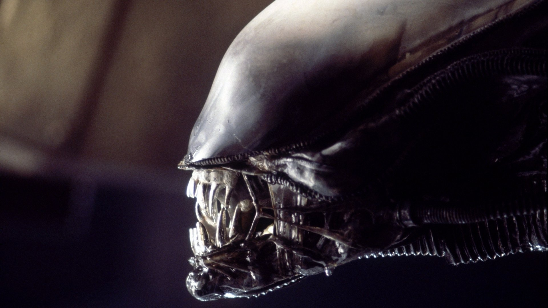 'Alien' Evolution: Explore Every Stage in the Xenomorph's Gruesome Life Cycle