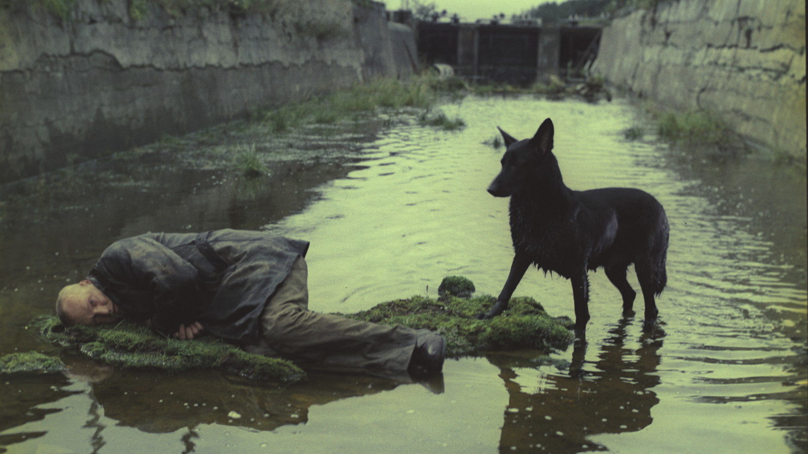 'Stalker' Trailer: Criterion Re-Releases Andrei Tarkovsky's Sci-Fi Classic — Watch