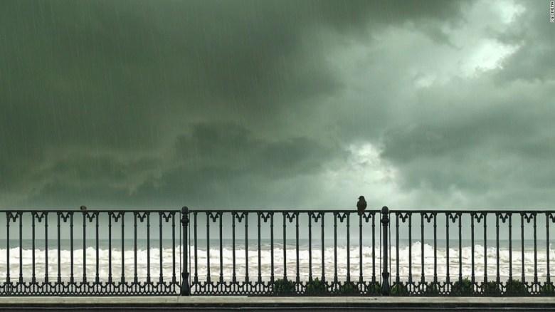 Abbas Kiarostami 24 Frames