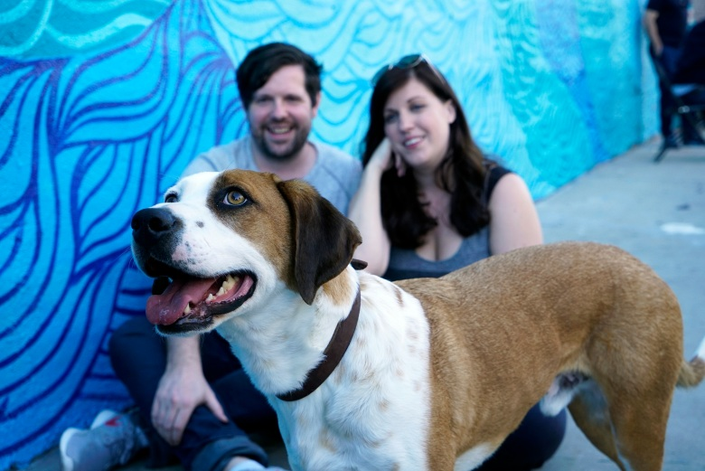 "Ned, Samm Hodges and Allison Tolman, ""Downward Dog"""