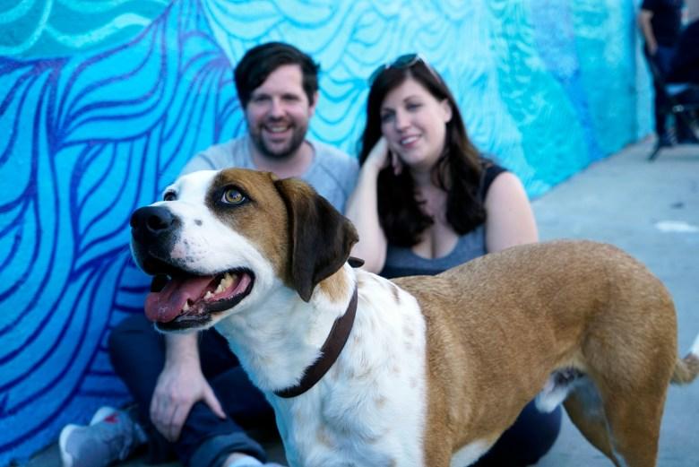 """Ned, Samm Hodges and Allison Tolman, """"Downward Dog"""""""