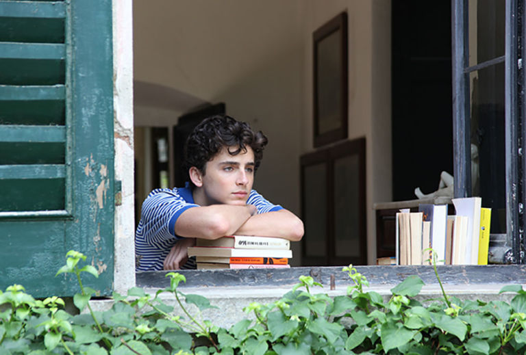 "Timothée Chalamet (""Call Me By Your Name"")"