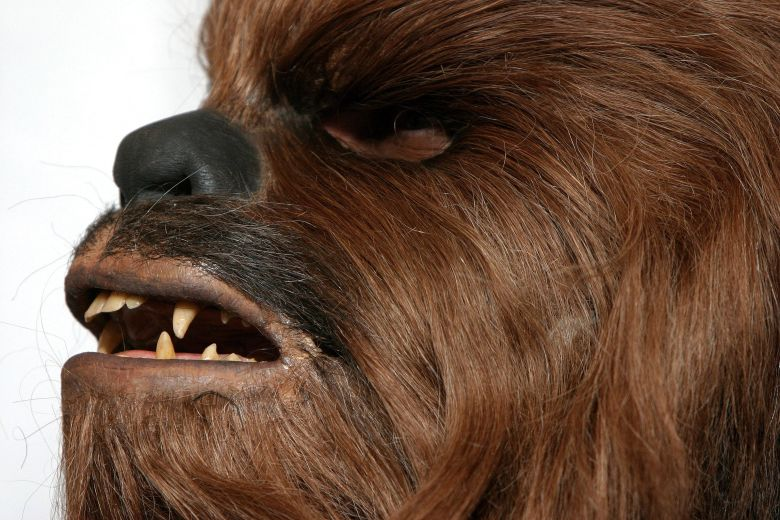 emilia clarke and chewbacca celebrate on the han solo set watch