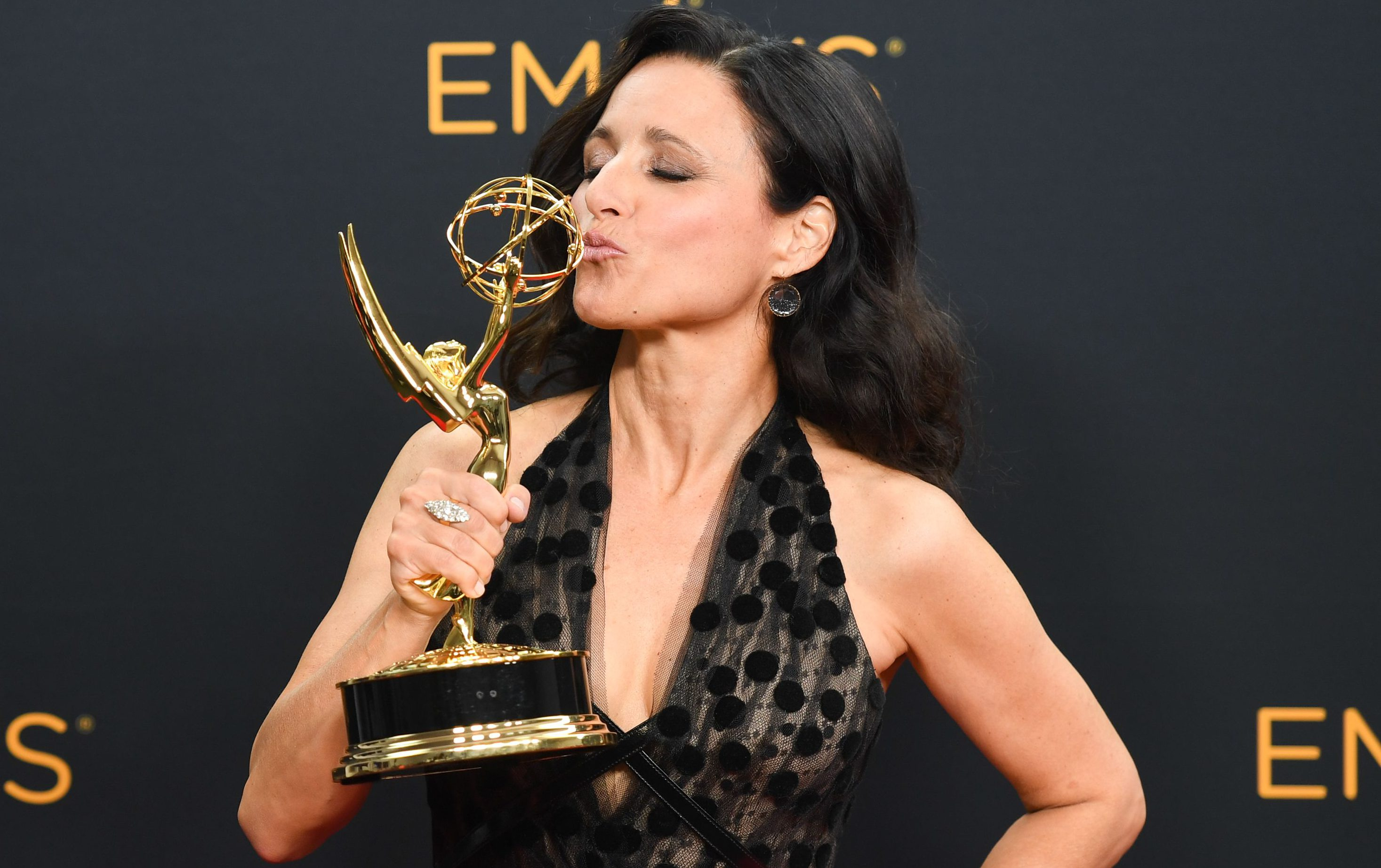 Julia Louis-Dreyfus Keeps Most of Her Awards Out of Sight