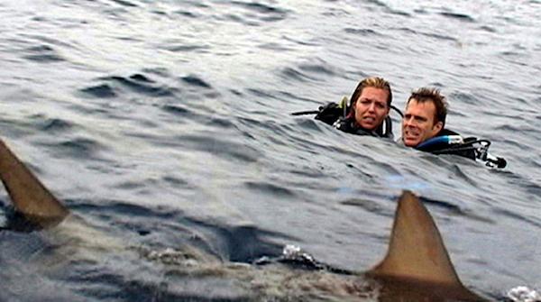 Resultado de imagen de open water
