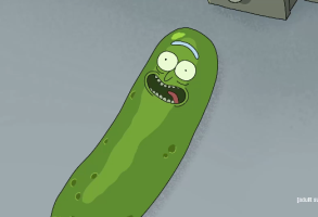 Pickle Rick Rick and Morty Season 3 Episode 3