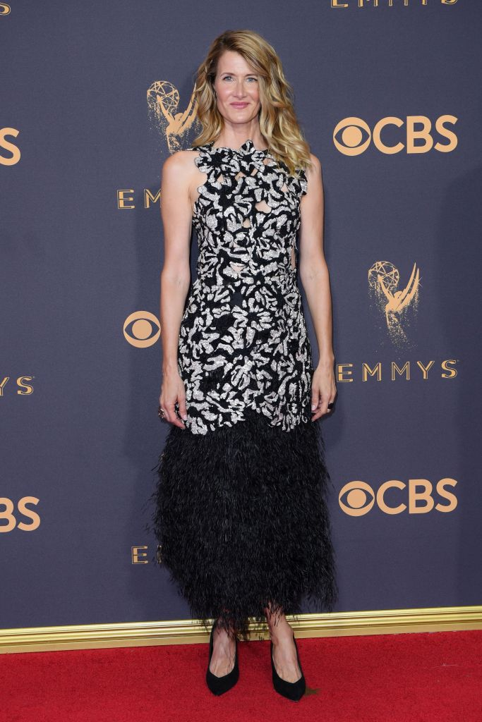 Laura Dern 69th Primetime Emmy Awards, Arrivals, Los Angeles, USA - 17 Sep 2017
