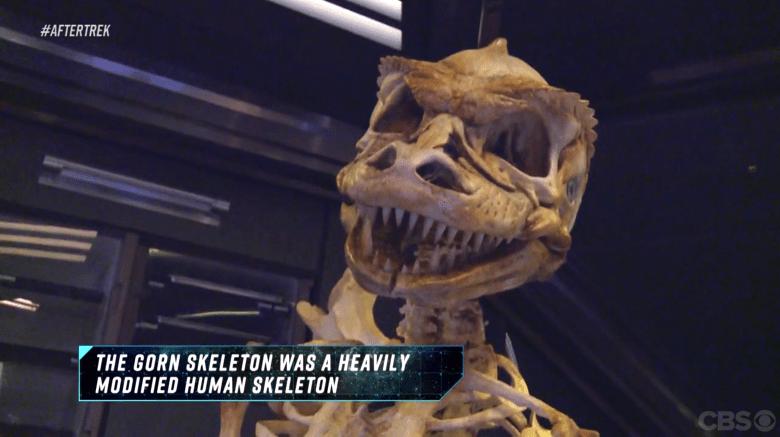 """Gorn Skeleton, """"After Trek"""""""
