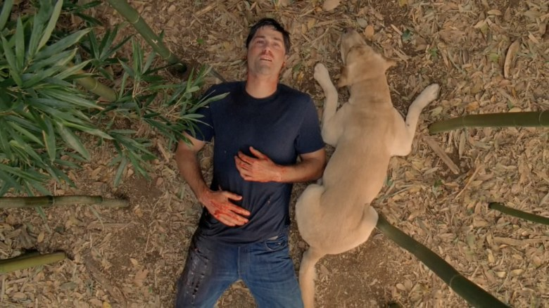 "Matthew Fox, ""Lost"""