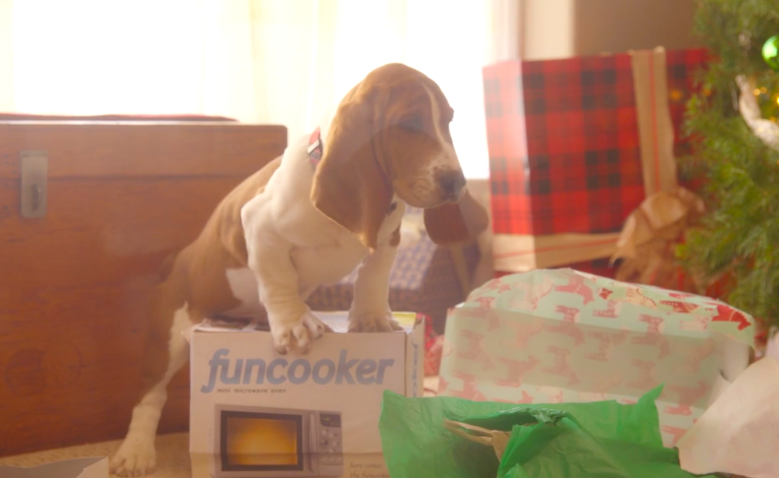 Funcooker, Puppies Crash Christmas