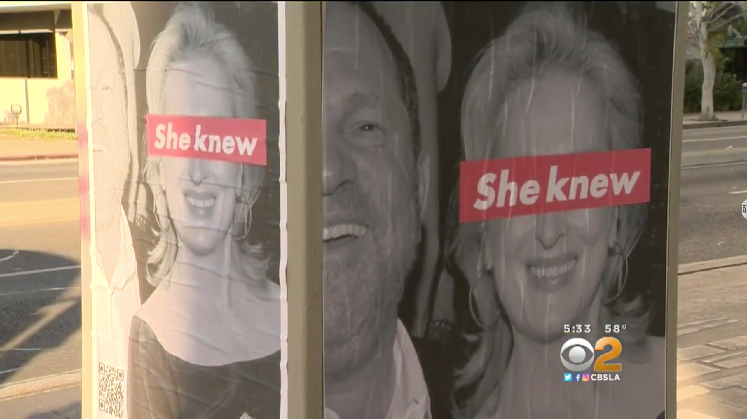 Meryl Streep has been targeted with 'She Knew' posters