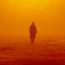 Roger Deakins Refused to Shoot 'Blade Runner 2049' the 'Sloppy' Way Hollywood Studios Expect