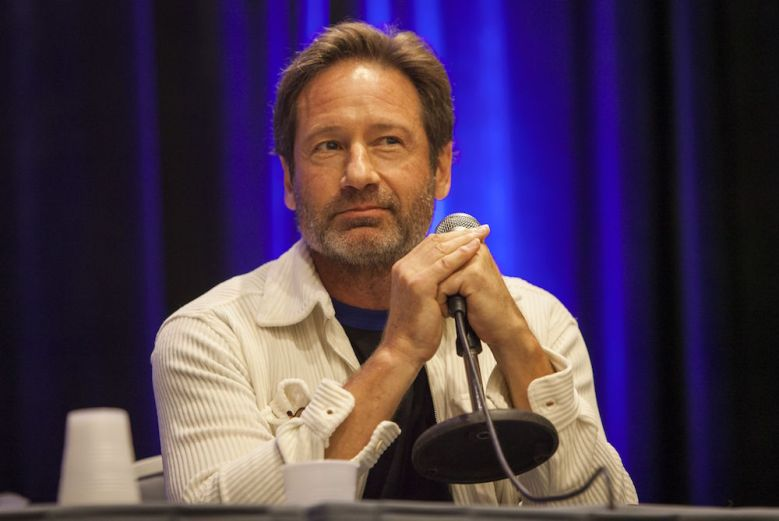 David Duchovny during Wizard World Chicago Comic-Con at the Donald E. Stephens Convention Center, in ChicagoWizard World Comic-Con 2016 - Day 3, Chicago, USA - 21 Aug 2016
