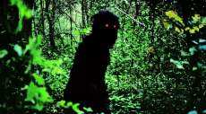 Uncle Boonmee Who Can Recall His Past Lives ghost monkey