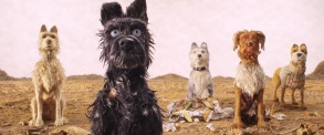 "(From L-R): Edward Norton as ""Rex,"" Bryan Cranston as ""Chief,"" Jeff Goldblum as ""Duke,"" Bob Balaban as ""King"" and Bill Murray as ""Boss"" and in the film ISLE OF DOGS. Photo Courtesy of Fox Searchlight Pictures. © 2018 Twentieth Century Fox Film Corporation All Rights Reserved"