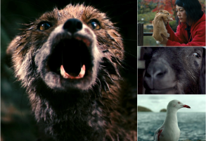 Best Animal Characters of the 21st Century