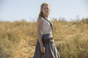 westworld season 2 evan rachel wood