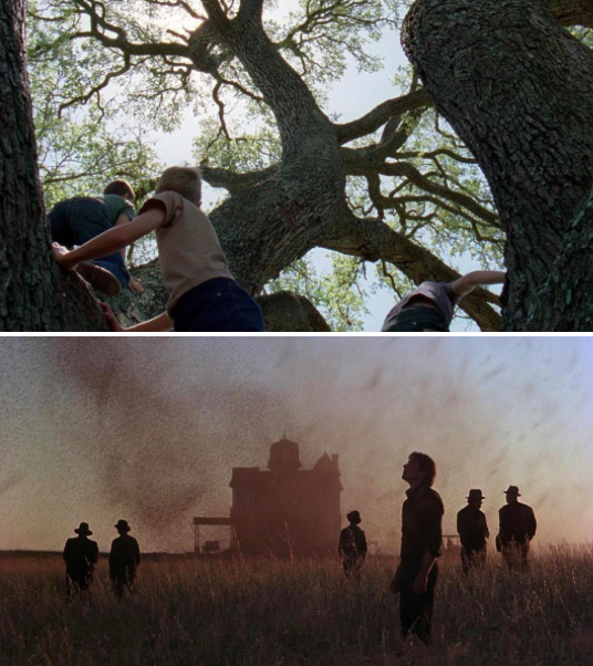 Terrence Malick's Best Shots: 'The Tree of Life,' 'Badlands' and