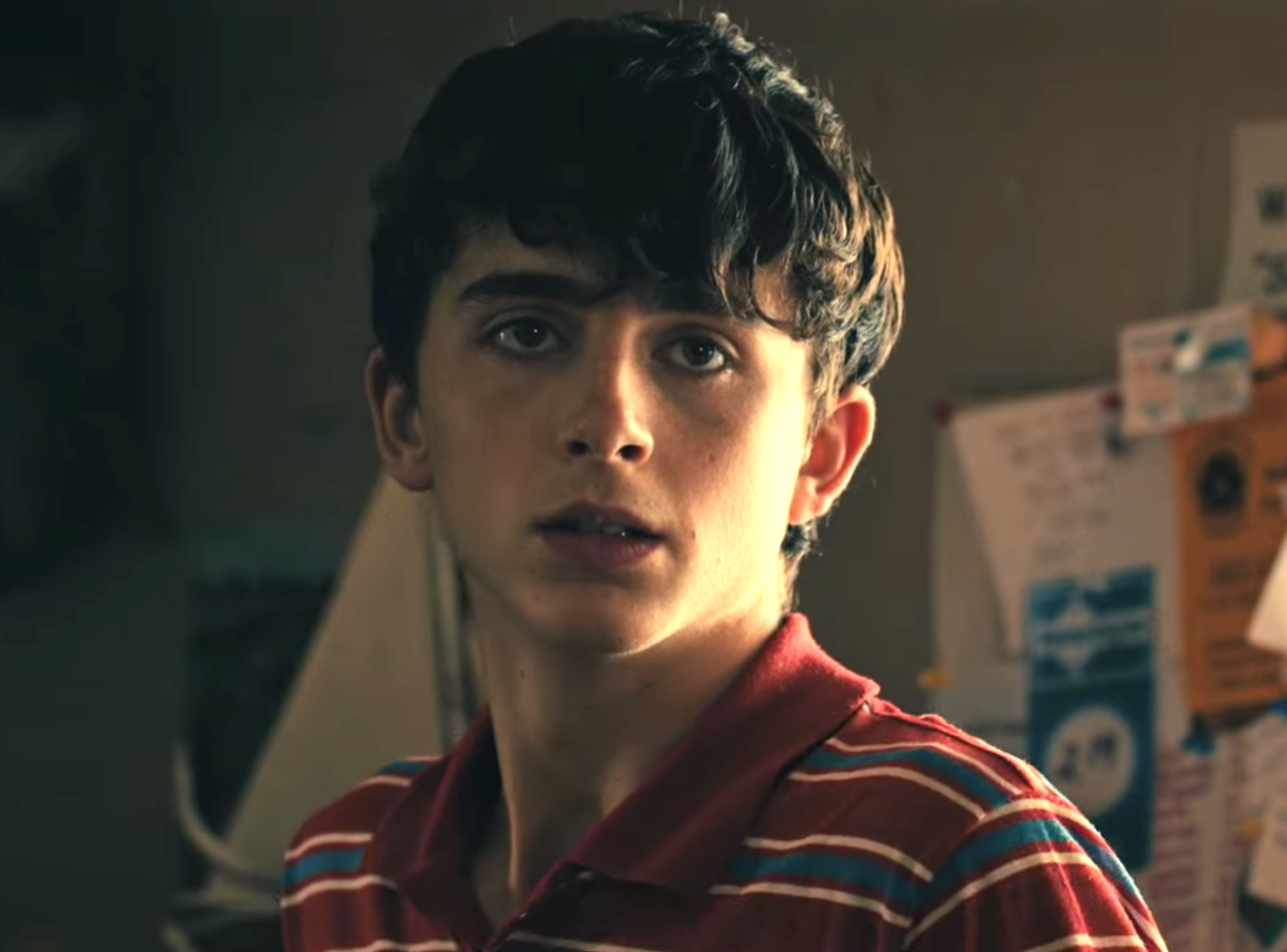 Timothée Chalamet Comes of Age in Hot Summer Nights Trailer