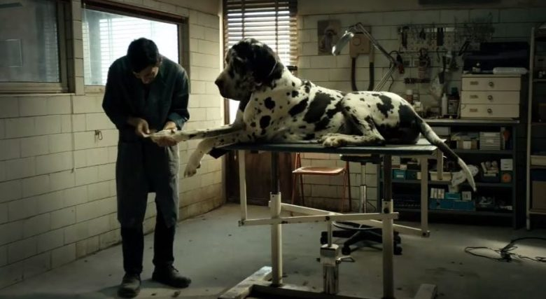 Cannes 2018: Dogman Is a Neutered Revenge Saga About Fascism and