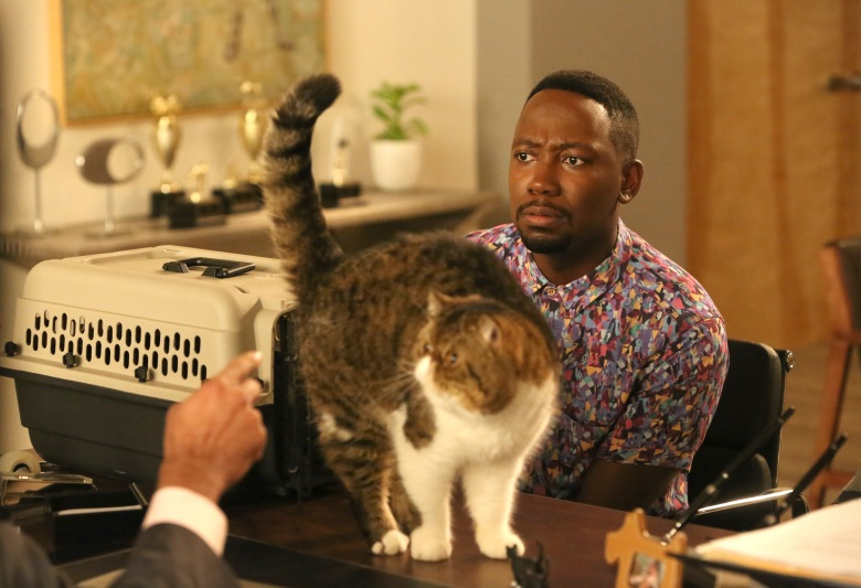New Girl' Cat Furguson Tribute: 9 Episode Facts | IndieWire