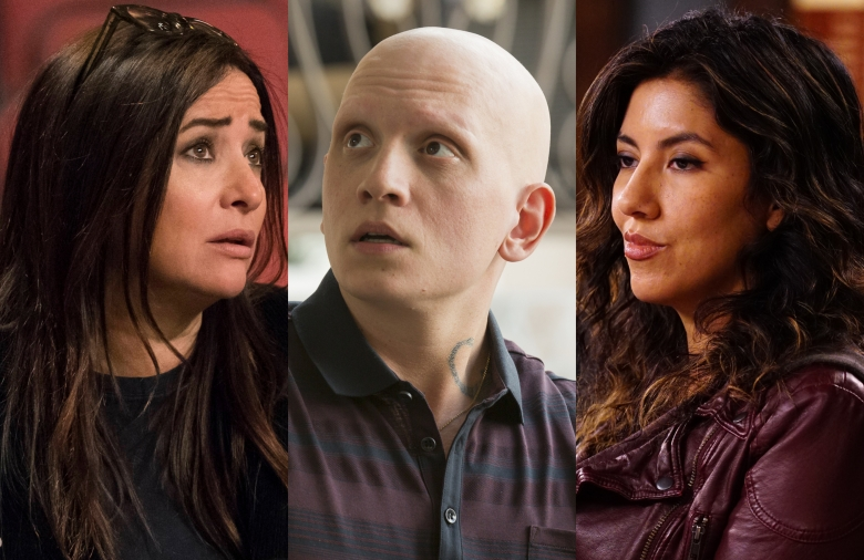 Best Comedy Series Emmy Nominees Pamela Adlon Barry HBO Brooklyn Nine-Nine Fox