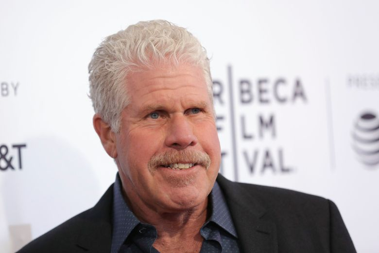 "Producer Ron Perlman attends a screening of ""To Dust"" at the SVA Theatre during the 2018 Tribeca Film Festival on in New York2018 Tribeca Film Festival - ""To Dust"" Screening, New York, USA - 22 Apr 2018"