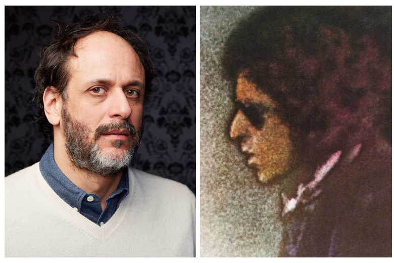 "Luca Guadagnino to direct adaptation of Bob Dylan's ""Blood on the Tracks"""