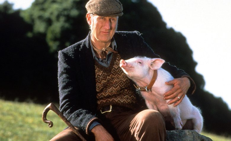 James Cromwell with Babe in a scene from the film 'Babe', 1995. (Photo by Universal/Getty Images)