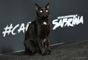 Salem Saberhagen'Chilling Adventures of Sabrina' TV show premiere, Los Angeles, USA - 19 Oct 2018