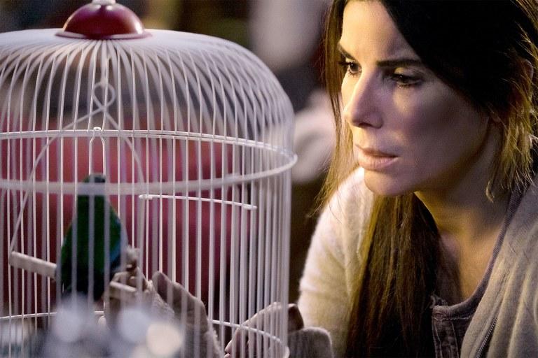 "Sandra Bullock, ""Bird Box"""
