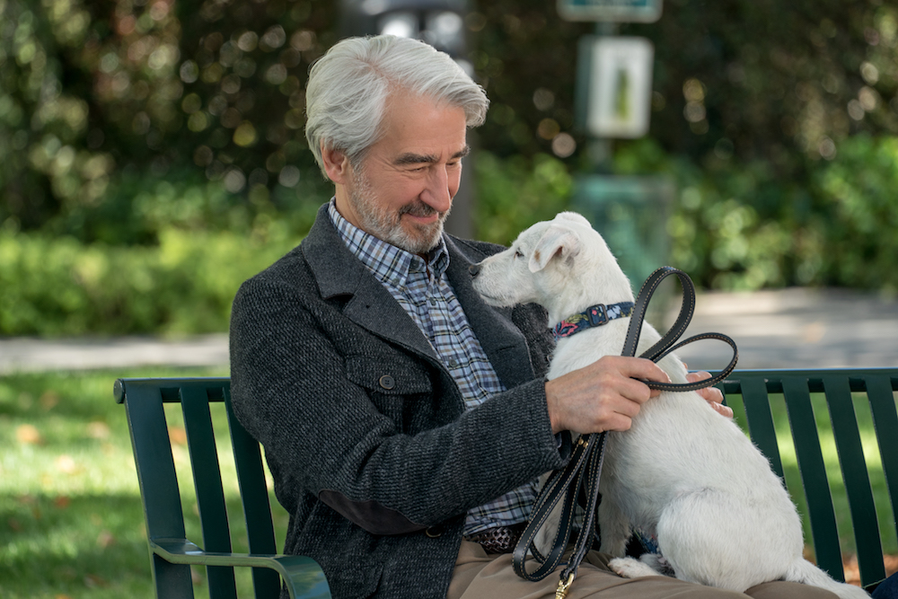 Grace and Frankie Season 5 Sam Waterston