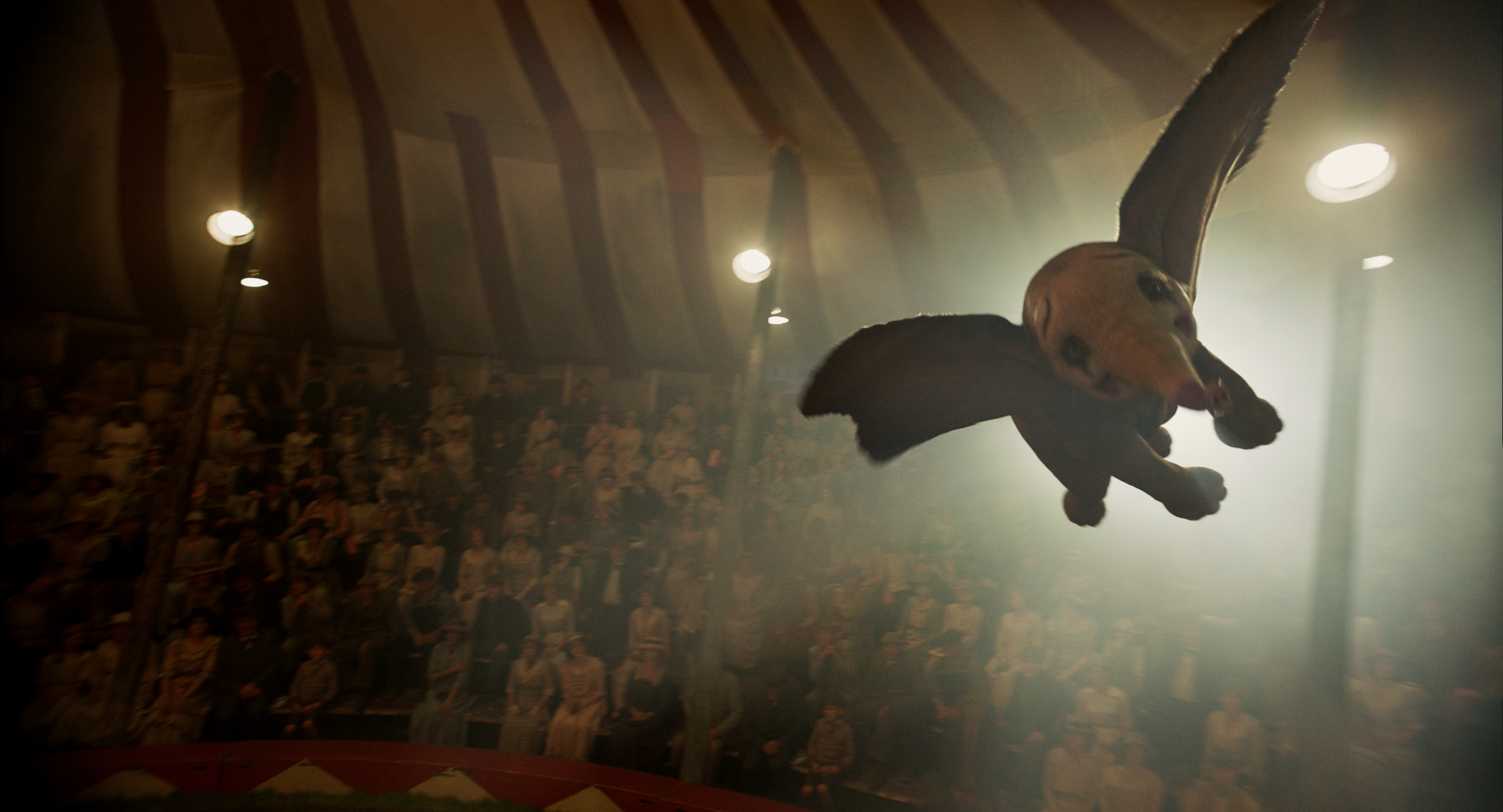 """FLYING HIGH – In Disney's new live-action adventure """"Dumbo,"""" a newborn elephant with giant ears discovers he can fly, and he's destined to be a star, which may or may not be a good thing. Directed by Tim Burton, """"Dumbo"""" flies into theaters on March 29, 2019."""