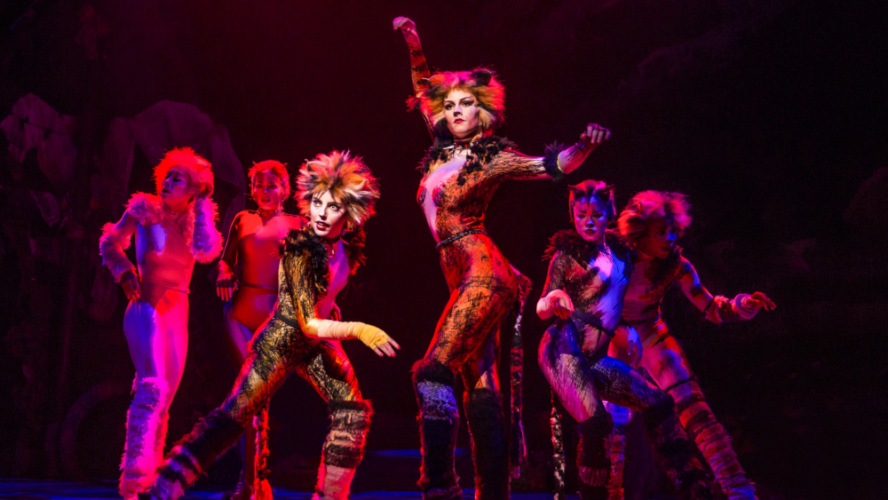 Cats\u0027 Surprises CinemaCon With First Footage
