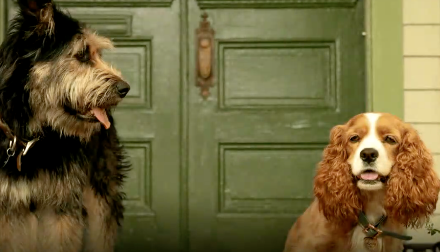 Lady And The Tramp Review Disney Plus Launches With A Neutered Remake Indiewire